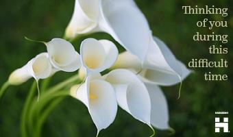 Sympathy Lilies thumb